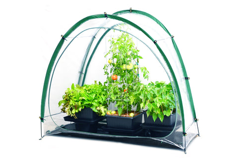 Culti Cave Mini Greenhouse