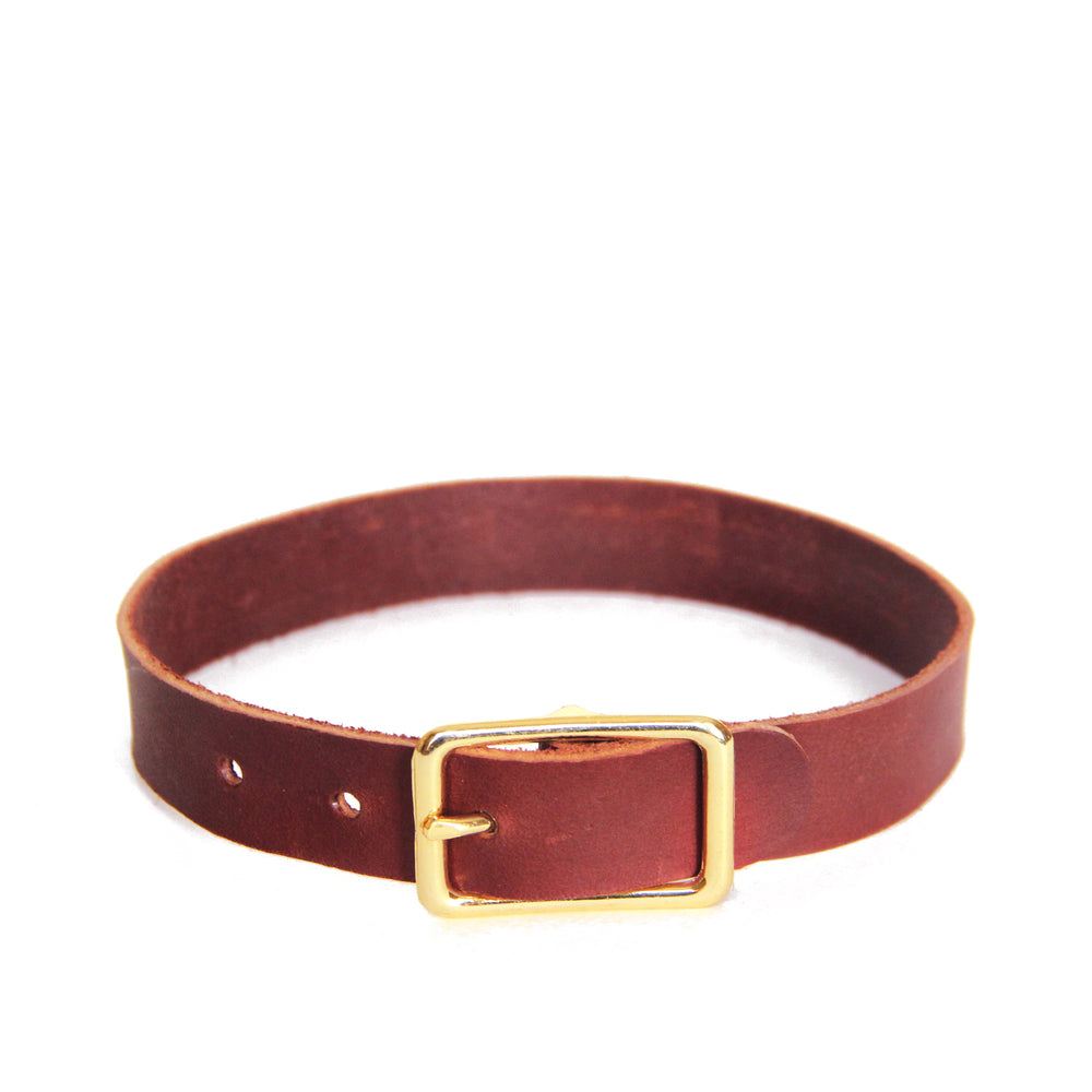 Brown leather choker with brass hardware, front view