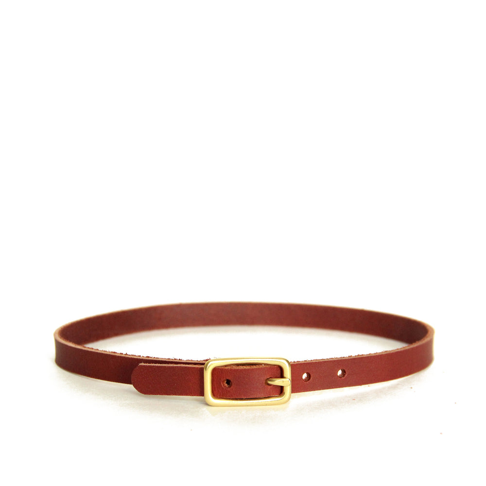 Chestnut brown leather choker with brass hardware. Front view of choker shown on a white background.