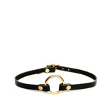 Black leather collar with brass o-ring and hardware.