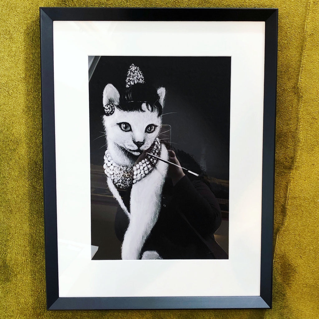 Audrey Cat