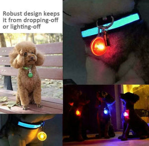 LED Lights Glowing Collar Pendant For Dog