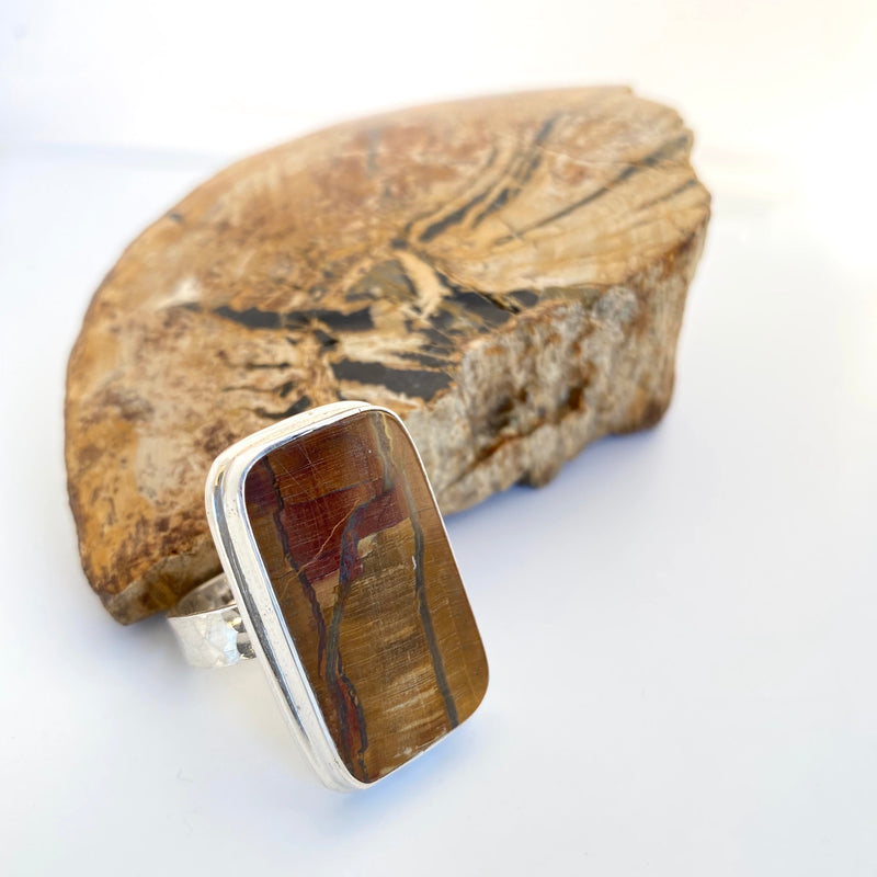 Fossil Wood Ring By Rare and Beautiful.