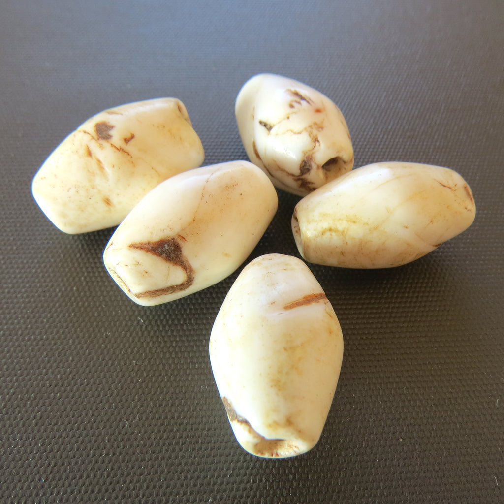 Old Conch Shell beads from Naga Land