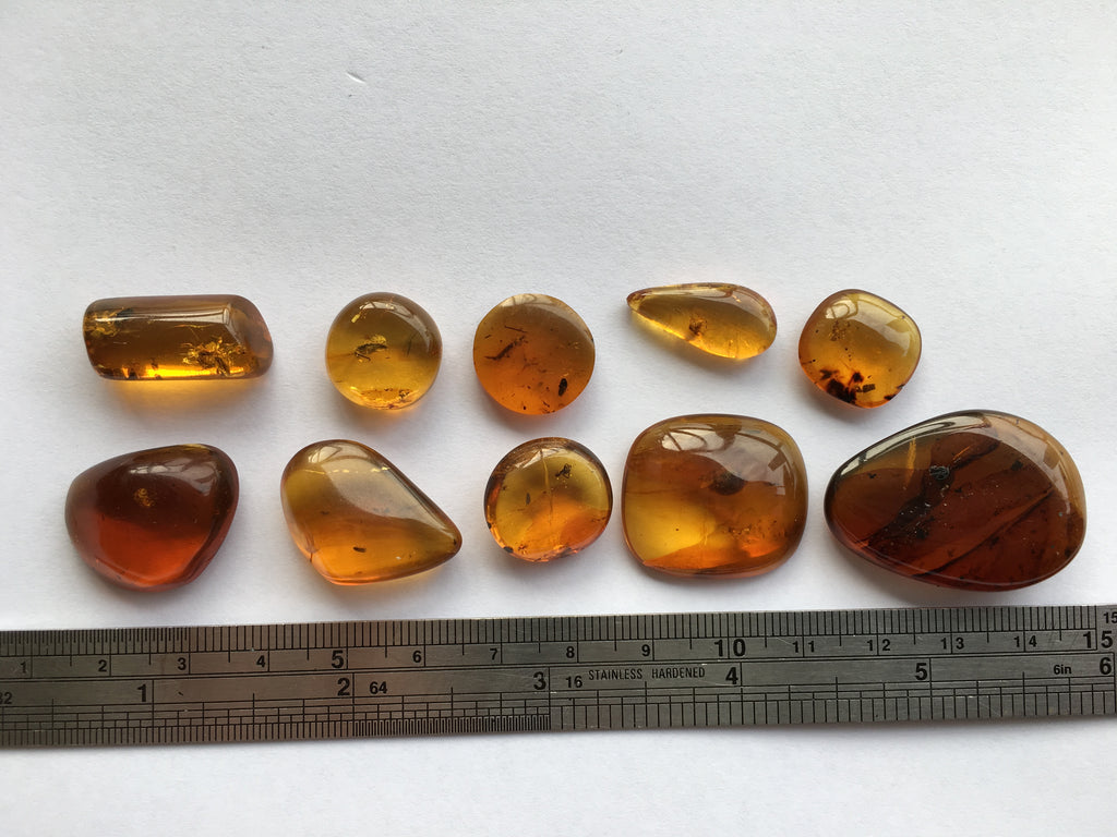 10 peices of Burmese Amber with insects