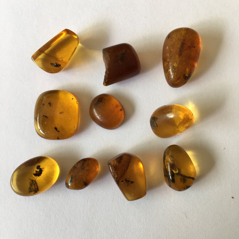 10 small pieces Burmese Amber