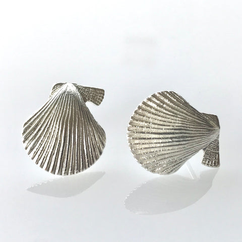 Scallop shell studs