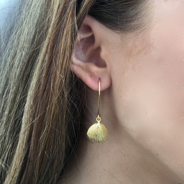 Tasmanian Trigonia Shell Earrings