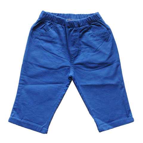 Warhol Cobalt Blue Pants