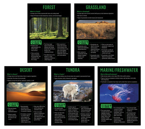 Ecosystems 5-Poster Set
