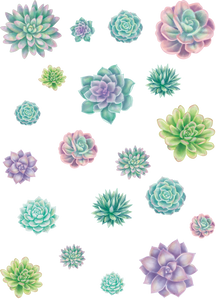 Rustic Bloom Succulents Accents - Assorted Sizes