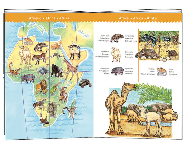 World Animal Observation 100pc