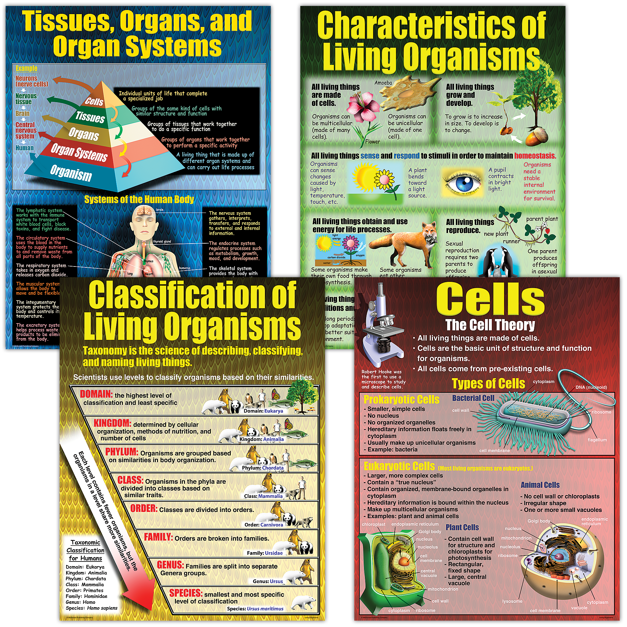 Living Organisms Poster Set