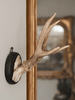 Collection of Antique Roe deer antlers mounted on circular shields - Decorative Antiques UK  - 1