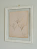 Antique French Herbariums Framed
