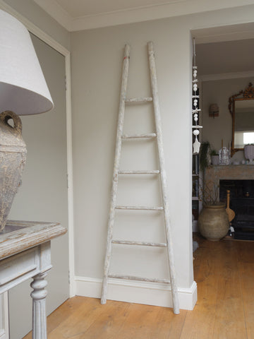 Antique French Fruit Pickers ladder
