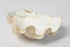 Beautiful Vintage Clam Shell