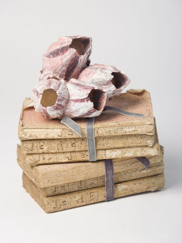 Antique French Pink Book bundles
