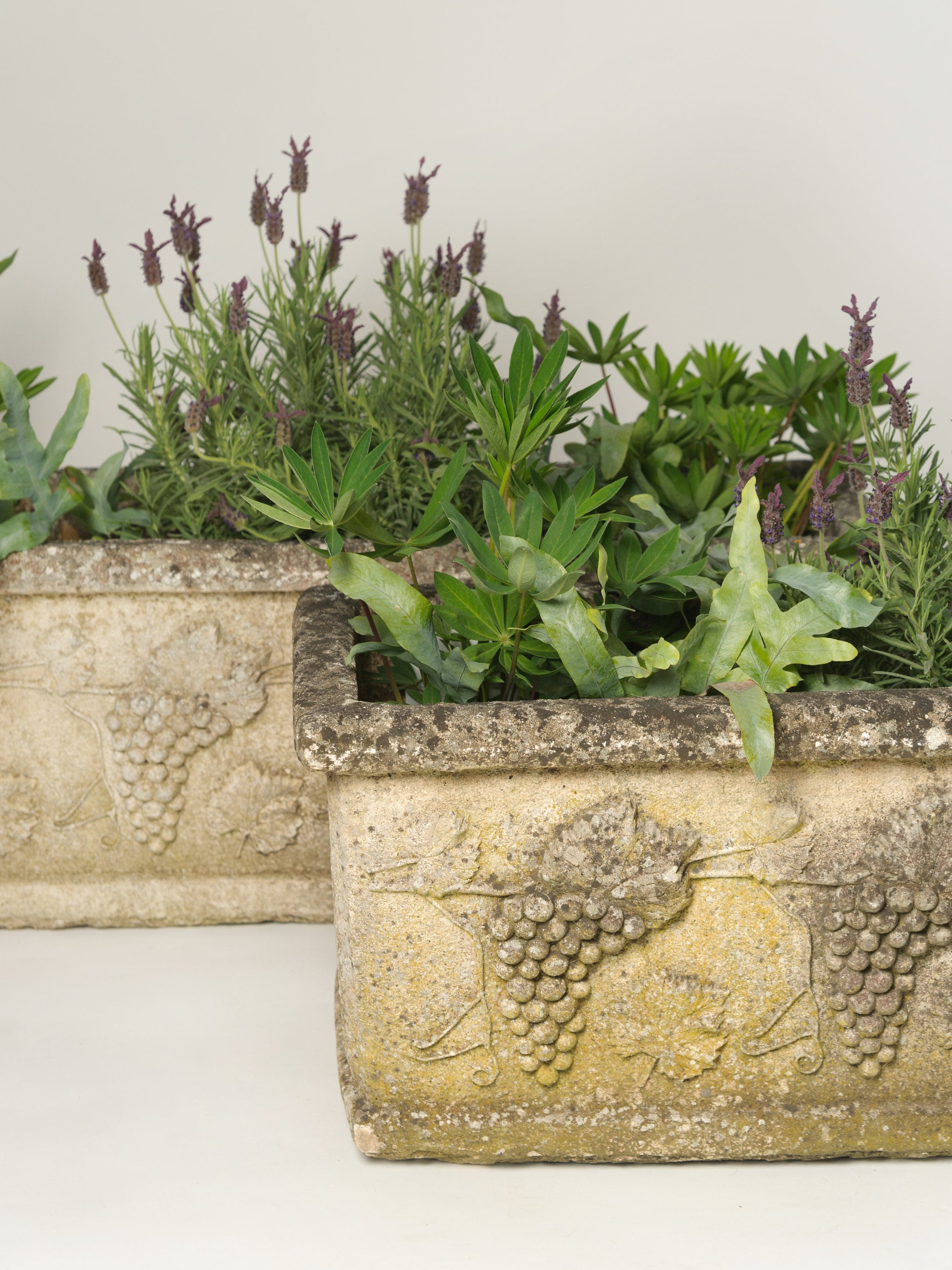 flowers estate wood tiled patio buy box planter teak filled with supply on trough gardeners planters