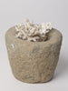 Antique French Stone Mortar