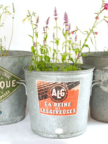 Collection Vintage French Galvanised Wash Tubs