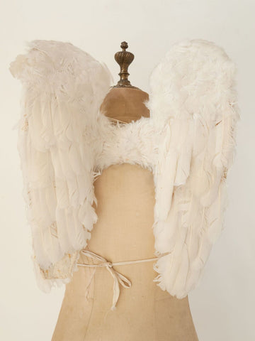 Rare Antique French Procession Feather Angel Wings