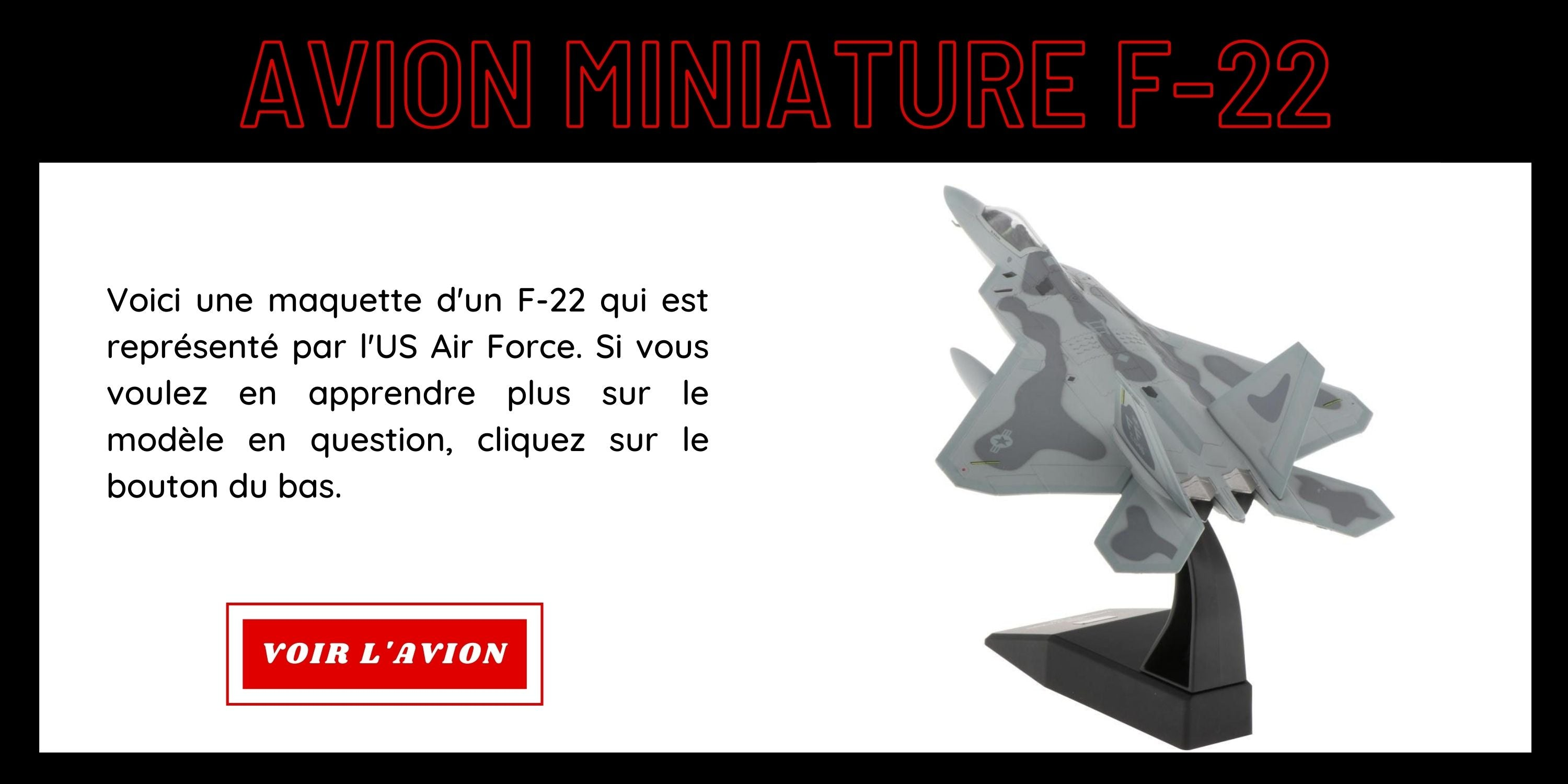 Avion Miniature F-22