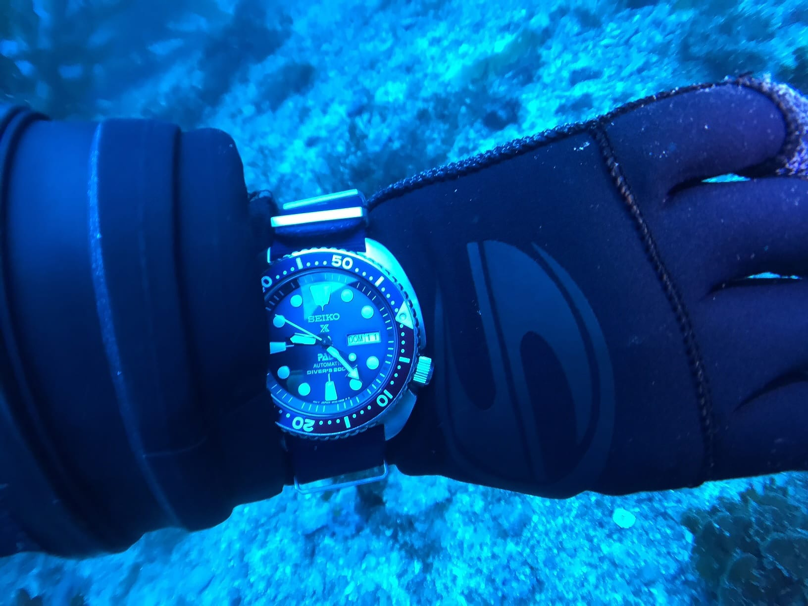 Professional watches for diving possess all the modern technologies