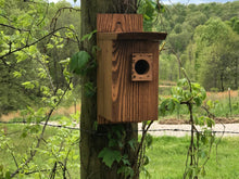 Load image into Gallery viewer, Eastern Blue Bird House Cedar Hill Country Market