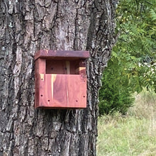 Load image into Gallery viewer, Multi Aviary Nesting Box Cedar Hill Country Market