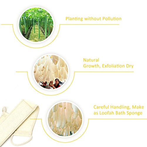 DigHealth Exfoliating Loofah Back Scrubber for Bath, Long Shower Luffa Sponge with Bar Soap Pocket, Body Sponge Scratcher with Natural Loufa for Men and Women