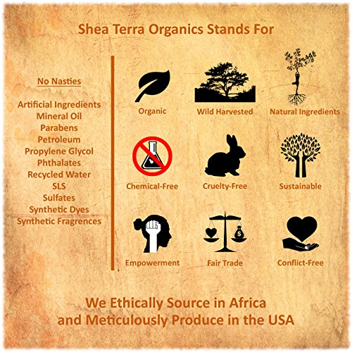 Shea Terra Organics Madagascan Tamanu Cold Pressed Extra Virgin Oil | Acne Treatment, Anti-Aging, Vitamin E Oil| Dry/Mature Skin Types - 2 oz