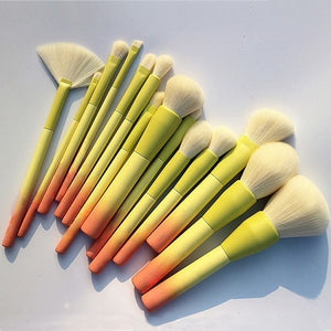 Ombre Makeup Brushes