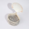 Clam Shell with School of Fish Jewelry Box