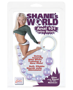 Shane's World Anal 101 Intro Beads - Purple