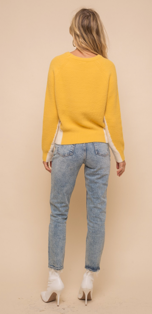 Load image into Gallery viewer, Mustard & Ivory Color Block Sweater