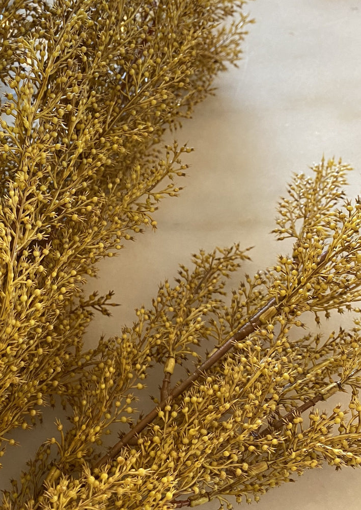 Load image into Gallery viewer, Sage Brush Bush - Mustard
