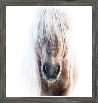 Palomino Art with a Weathered Grey Frame