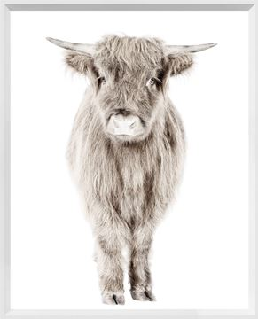 Posing Calf Wall Art with White Frame