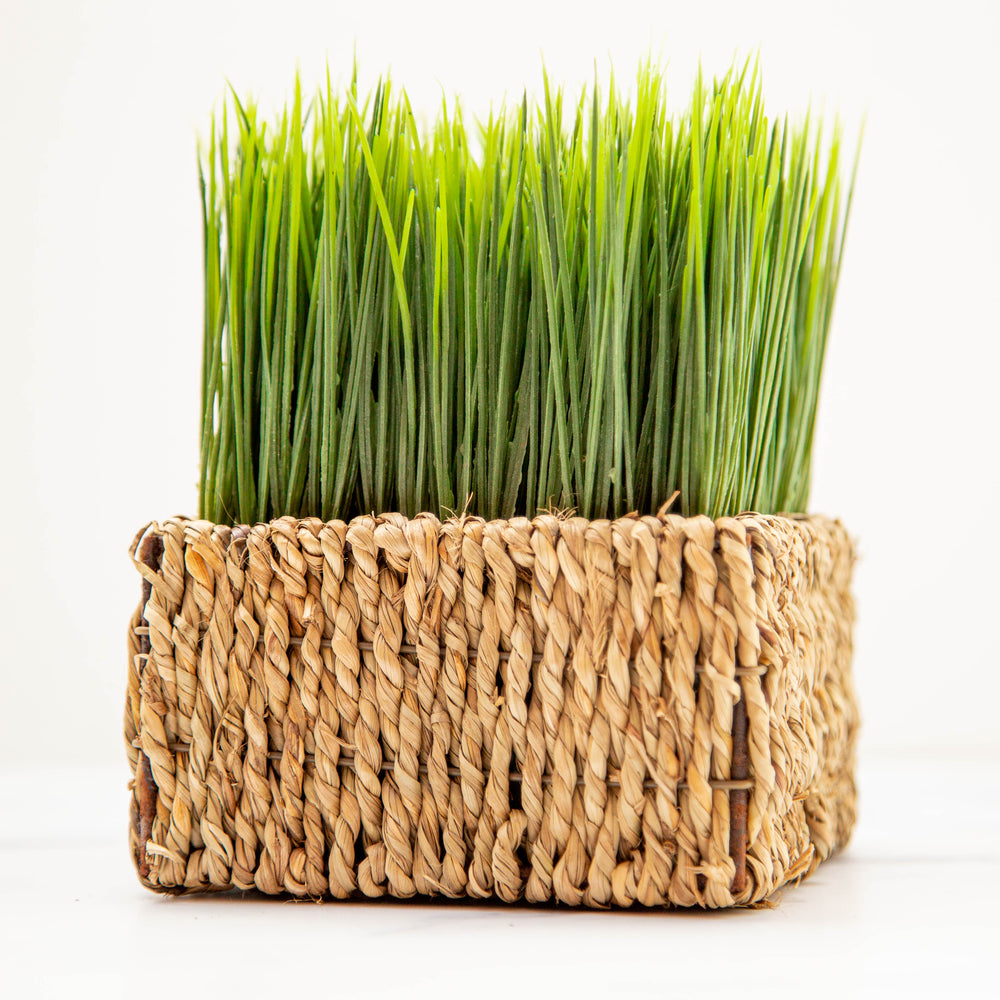 Grass in Woven Basket