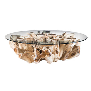 The Willow Root Coffee Table