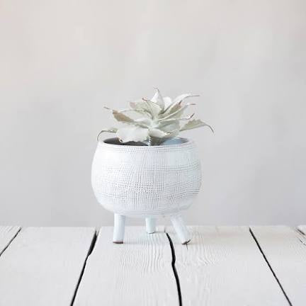 White Footed Terra Cotta Planter with Indention Pattern