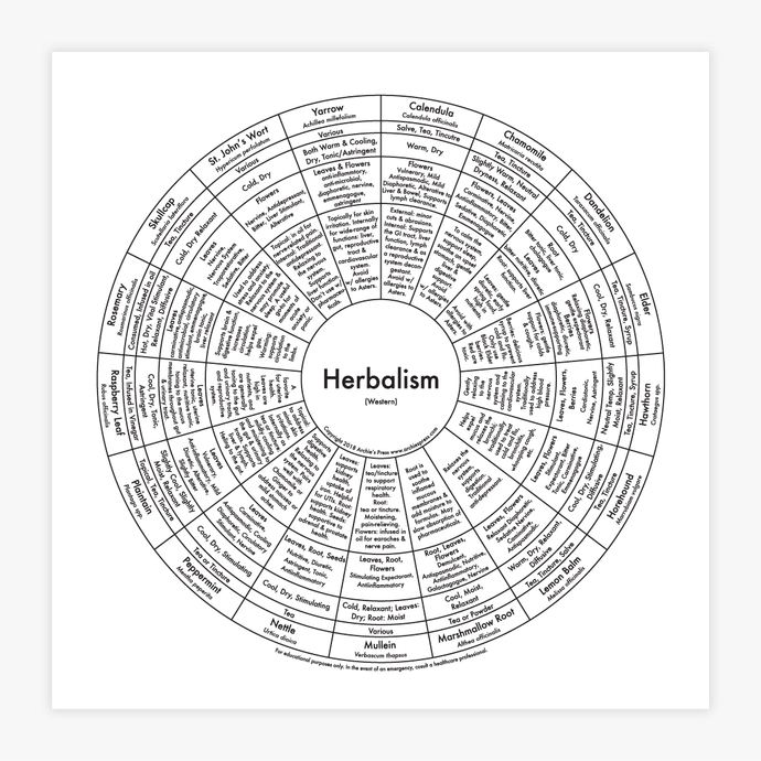 Archie's Press - Herbalism Chart Print