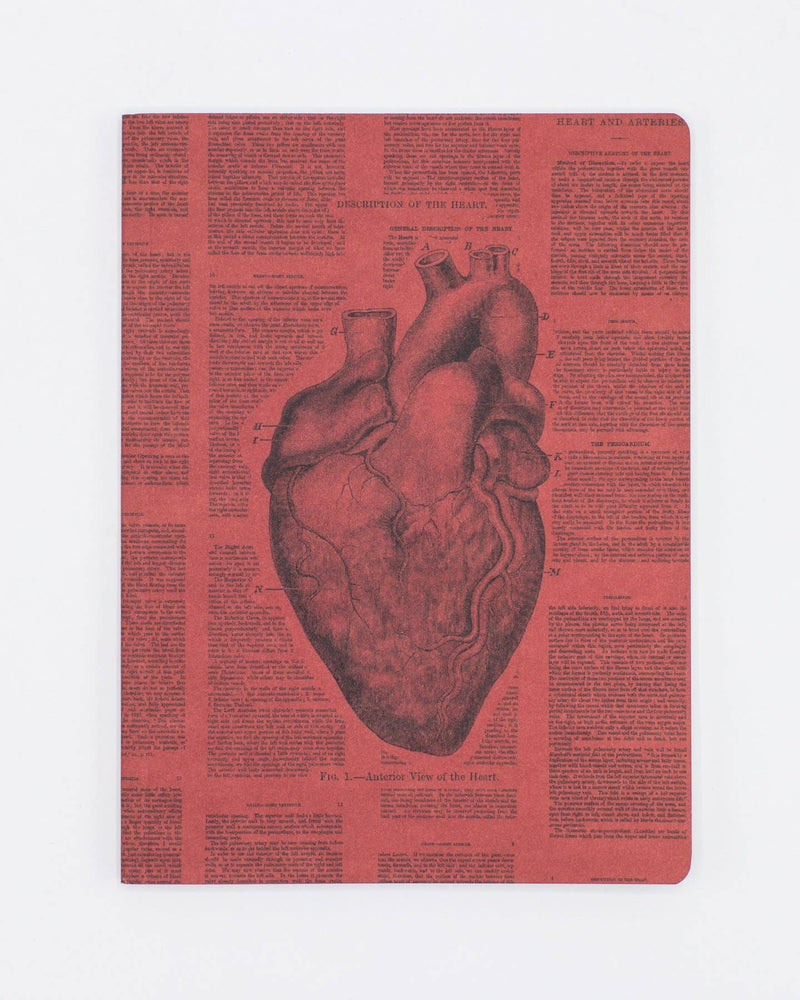 Anatomical Heart Softcover Notebook Lined