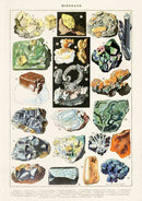 "Natural History French Minerals Print - 8"" X 10"""