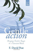 Gentle Action:Bringing Creative Change to a Turbulent World
