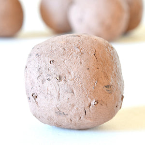 Department of Everyday - Native East Coast Seed Bombs