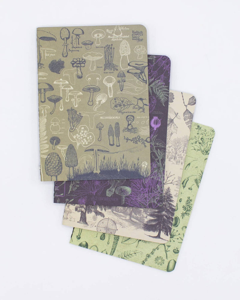 Plants + Fungi Notebooks 4-pack