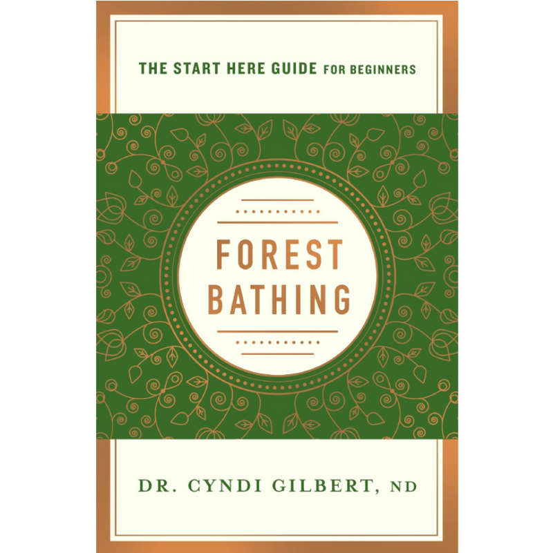 Forest Bathing: A Start Here Guide for Beginners