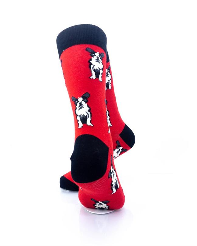 cooldesocks boston terrier crew socks rear view